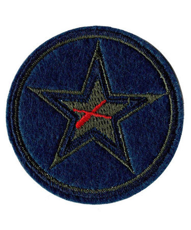 Bild på BlueGreen Star badge