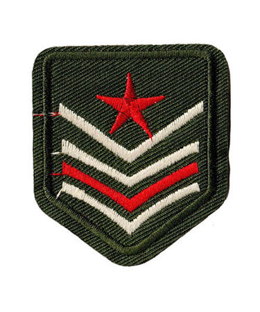 Bild på Military Badge 4